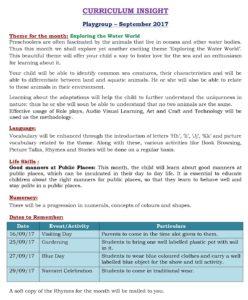 Playgroup Curriculum Insight September 2017