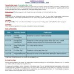 Curriculum Insight  Nursery –  October and November 2018